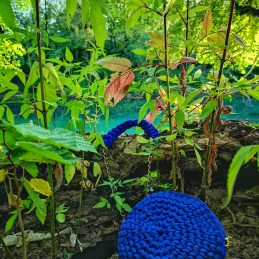 Ber blue bag